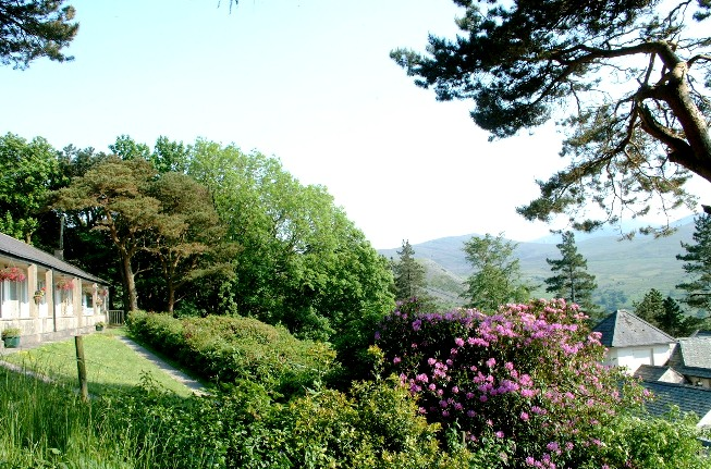 Plas Heulog Holiday Cottages Snowdonia